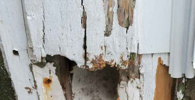 Check out our Wood Rot Repair