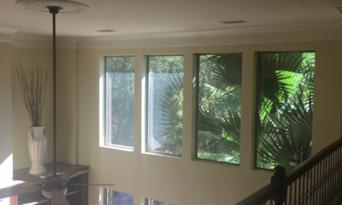 Interior Painting Project