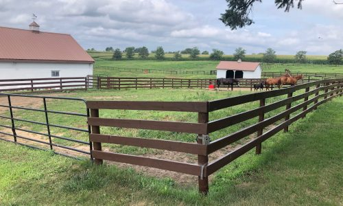 Barn Painting and Fence Staining