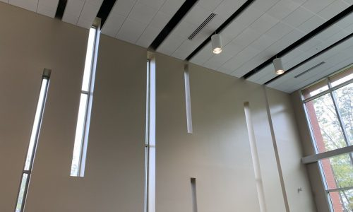 College Library Walls