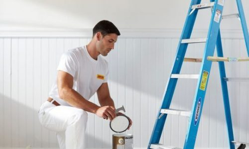 Interior Home Painters NWI