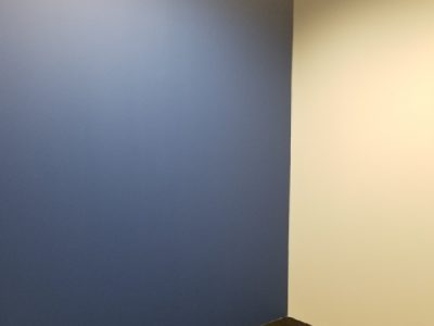 bluefin payment systems offices in atlanta georgia were painted by certapro