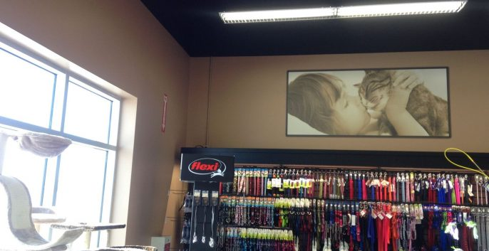 Commercial Retail painting by CertaPro Painters of Southern Alberta