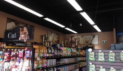 Commercial Retail painting by CertaPro painters in Medicine Hat, AB