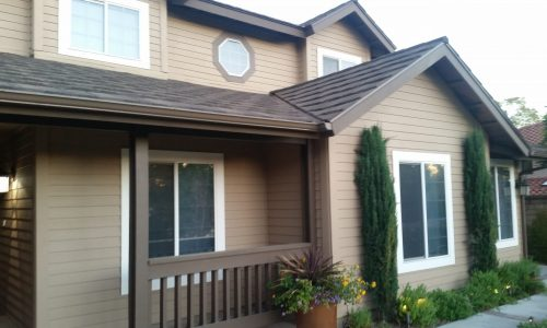 Siding Painting Project